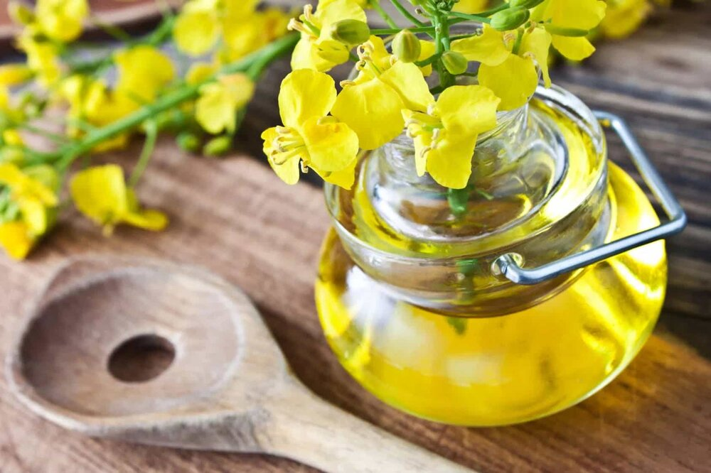 canola flowers in a jar