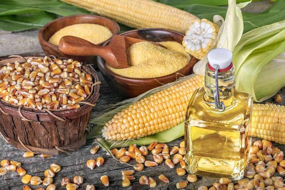 Corn Oil – 14 Health Benefits and Side Effects