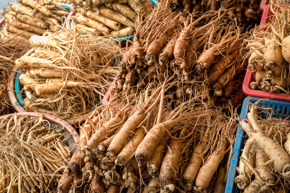 ginseng root bunch farm