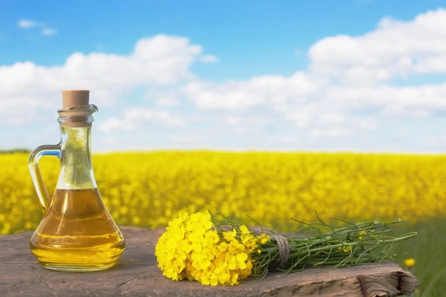 rapeseed oil and farm