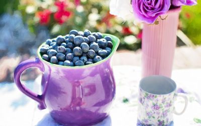 Blueberries – Health Benefits and Side Effects